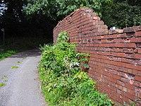 Old Brick Wall - geograph.org.uk - 1459733.jpg