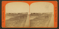 Old Fort San Marco, from Robert N. Dennis collection of stereoscopic views 2.png