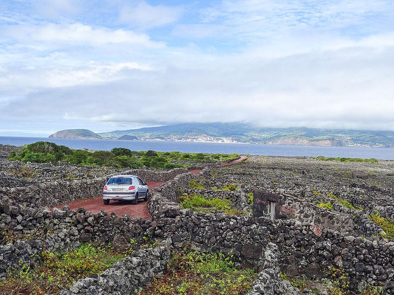 File:Old Vineyard on Pico Island (21543958610).jpg