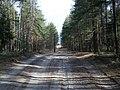 Orekhovo-Zuyevsky District, Moscow Oblast, Russia - panoramio - citrin (2).jpg