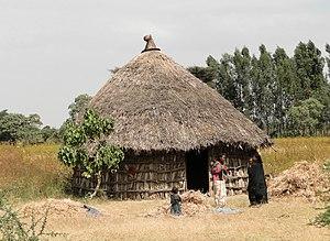 Oromo people - A rural Oromo dwelling.