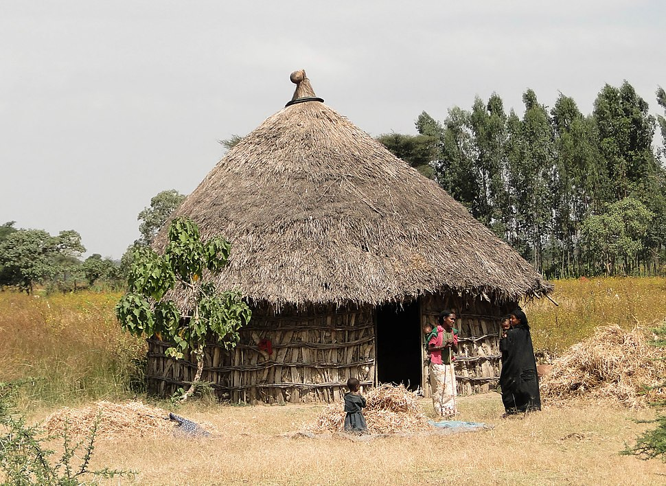 Oromo dwelling