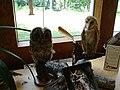 Owls on Display (6330976480).jpg