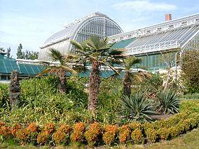 M nagerie et jardin des plantes m tropolitain budapest - Zoo jardin des plantes ...