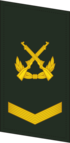 PLAGF-Collar-0704-SGT.png