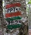 PPT sign in Lovćen national park, Primorska Planinarska Transverzala, Montenegro 102.jpg