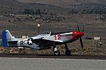 P 51d The Rebel by D Ramey Logan.jpg