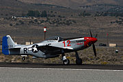 P 51d The Rebel by D Ramey Logan.jpg