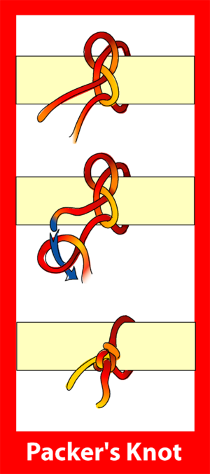 Packer's knot - Image: Packers knot