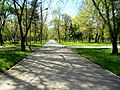 Parcul Central, BL-63.jpg