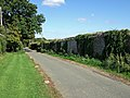 Park Wall Stalbridge Park - geograph.org.uk - 557834.jpg