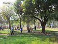 Parque La Federación, Barinas.jpg