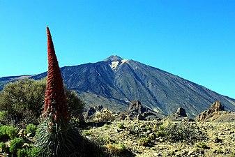 Parque nacional del Teide.jpg