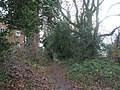 Path alongside railway line going towards Haslemere Station - geograph.org.uk - 646116.jpg
