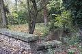Perthes-en-Gatinais - Ru du Rebais - 2012-11-14 - IMG 8198.jpg