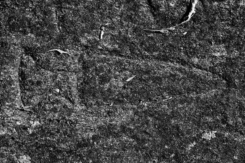 Petroglifo do Castriño de Conxo 3