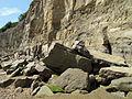 Pett nivel de la playa (14816575981) .jpg