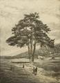 Pi de les Tres Branques 1887.png