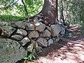 Pikku-Ahveniston luontopolku 2.jpg