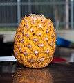 Pineapple fruit 2.jpg