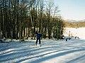 Platak - ski 1985.g. - panoramio.jpg
