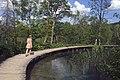 Plitvice Lake 13.jpg