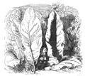 Podróże Gulliwera tom I page0229.png