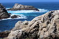 Point Lobos 16.JPG