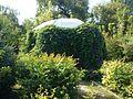 Poltava Botanical garden (31).jpg