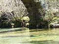 Ponte da Varziela (4515511913) (2).jpg