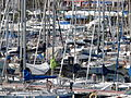 Port Olimpic (7856339550).jpg