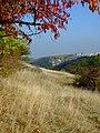 Praha, Jinonice, pohled do Prokopského údolí z louky nad Opatřilkou.jpg