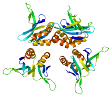 Protein SUB1 PDB 1pcf.png