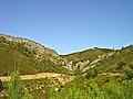 Proximidades da Albufeira de Castelo de Bode - Portugal (3668514935).jpg