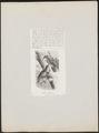 Ptilornis magnificus - 1872 - Print - Iconographia Zoologica - Special Collections University of Amsterdam - UBA01 IZ16100051.tif