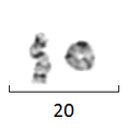 R(20) - ring chromosome 20.PNG