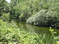 Río Guadarrama Remanso.jpg