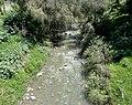 Río Guanajuato a su paso por Marfil, Guanajuato.jpg
