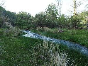 Río Palancia a su paso por la localidad de Viver, Alto Palancia, Castellón 01.jpg