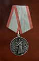 """RIAN archive 775416 Medal """"For Distinction in Guarding the State Border of the USSR"""".jpg"""