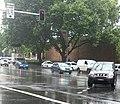 Rain in Sydney.jpg