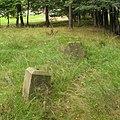 Rajcza old cemetery.jpg