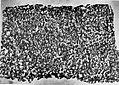 Rajula Mandagiri Ashoka Minor Rock inscription.jpg