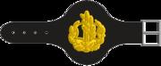 Rasar-Yekhidati-3-1-1.png