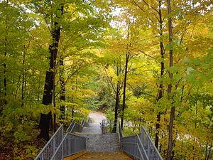 Centennial Park (Toronto) - Rathburn Road E entrance to the Etobicoke Creek Trail at Centennial Park