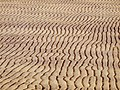 Ripples in the Sand - geograph.org.uk - 1265890.jpg