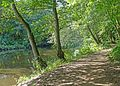 River Aire (29691577451).jpg