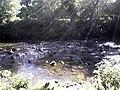 River Allen - geograph.org.uk - 367283.jpg