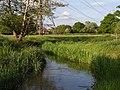 River Loddon - geograph.org.uk - 175443.jpg