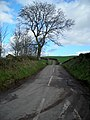 Road to Carthat - geograph.org.uk - 354815.jpg